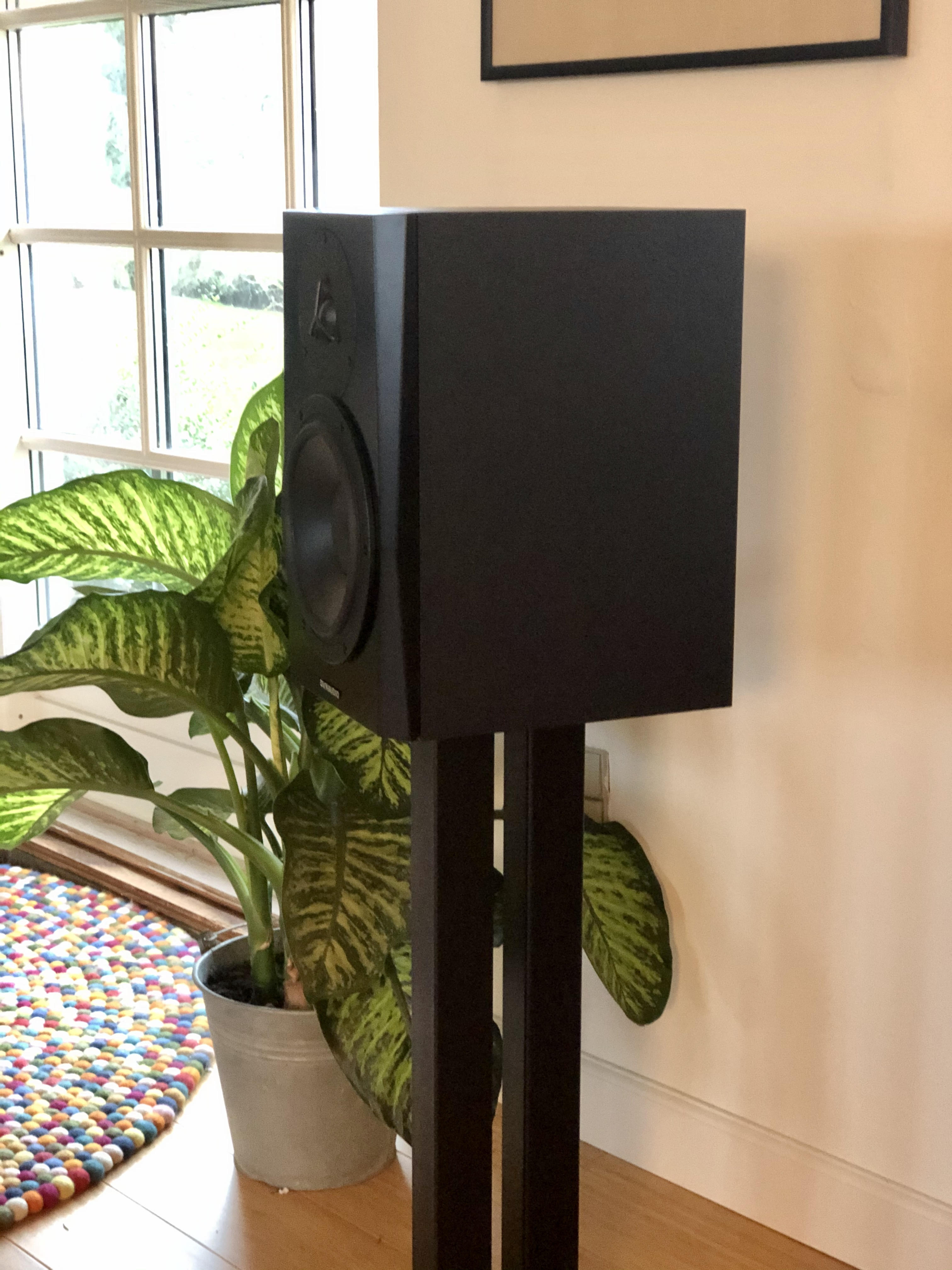 Dynaudio Lyd 8 on stand